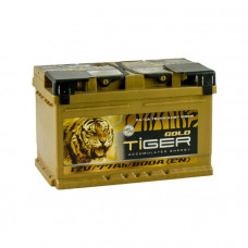 Tiger Gold 77Ah 800 A[EN] R+